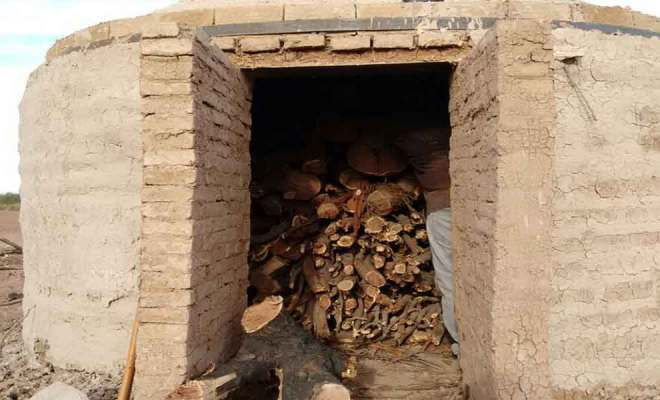 Producen Carbón Vegetal Sustentable en Valle de Mexicali