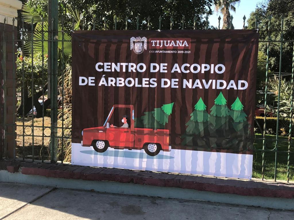 SERÁ PARQUE MORELOS CENTRO DE ACOPIO DE ARBOLES NAVIDEÑOS